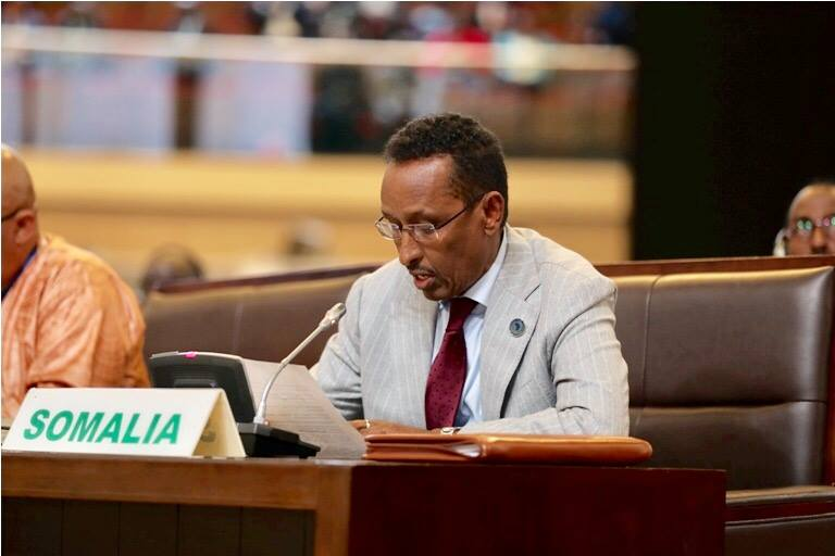 The Somali foreign minister represented the president at the African summit in Kigali on the launch of the signing of the Free Trade Area Treaty
